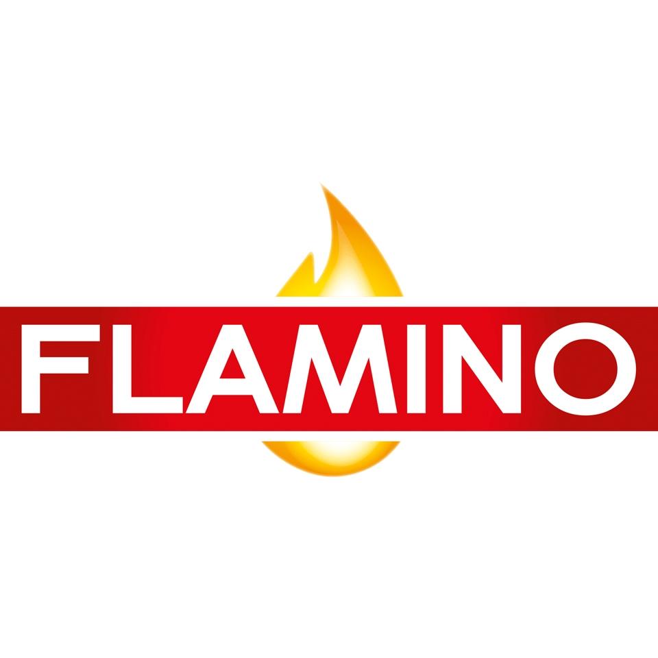 logo flamino 2019