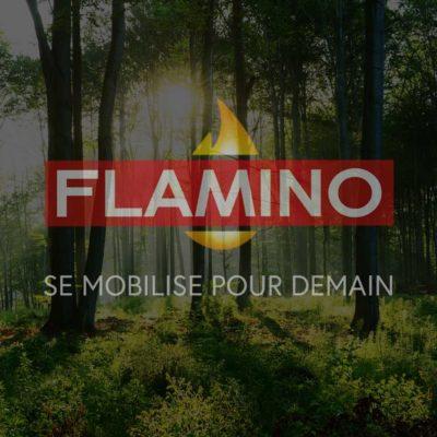 Flamino se mobilise pour demain
