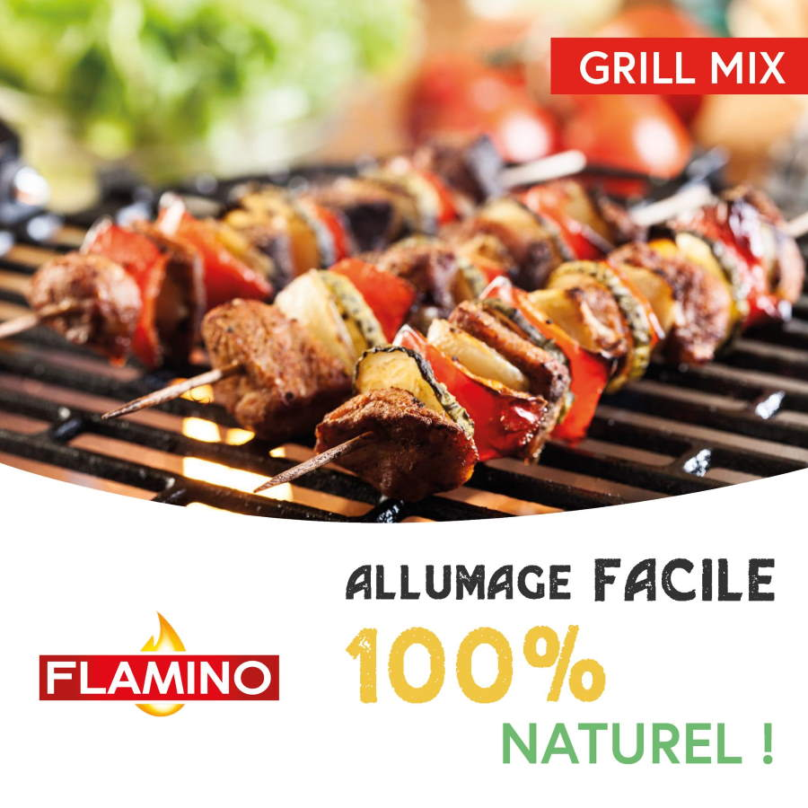Grill mix 2 en 1 allumage naturel